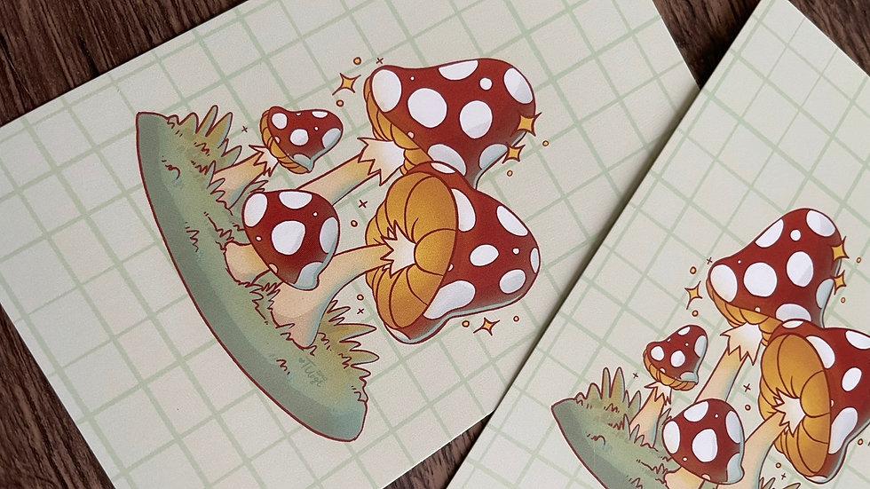 4x6 Postcard - Mushroom Full