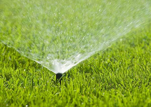 water_the_lawn.jpeg