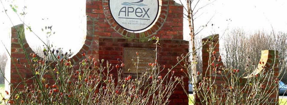Welcome to Apex Park