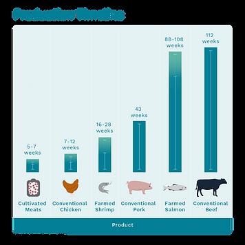 2-production-timeline-mobile.png