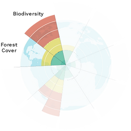 Planetary Boundaries Model small Forest