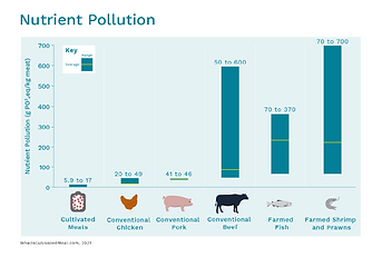 Nutrient Pollution WICM_1.png