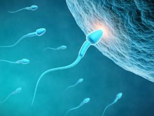 Η ποιότητα του σπέρματος δείχνει πόσο υγιείς είστε!