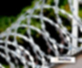 redetelas-concertina-energizada.jpg