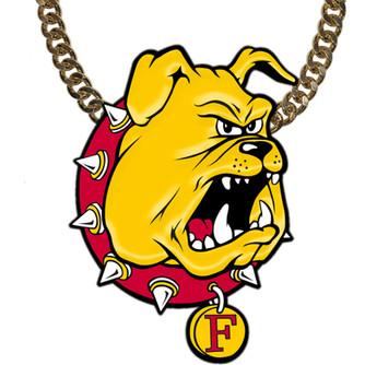 Ferris State University DIE.jpg