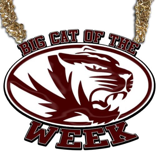 BIG CAT OF THE WEEK.jpg