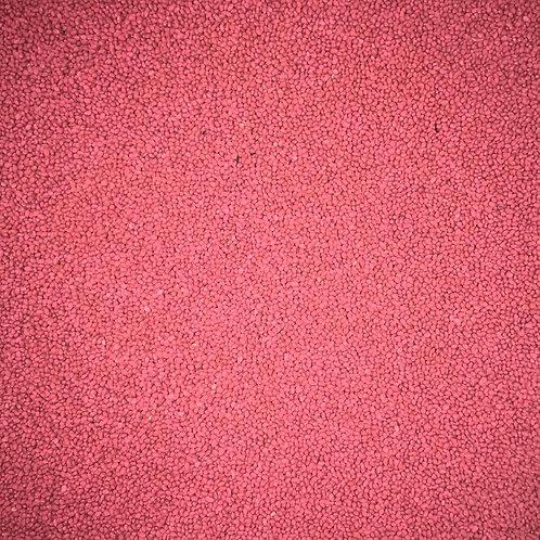 Medium Red Clover