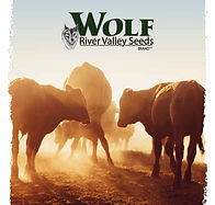 wolf river logo with cattle.JPG