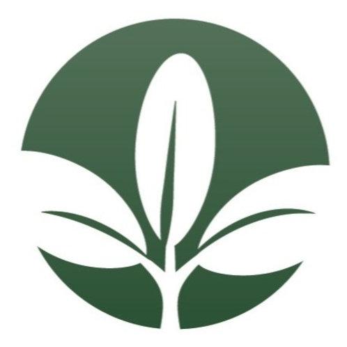 L-310 Legacy Premium Economy Alfalfa