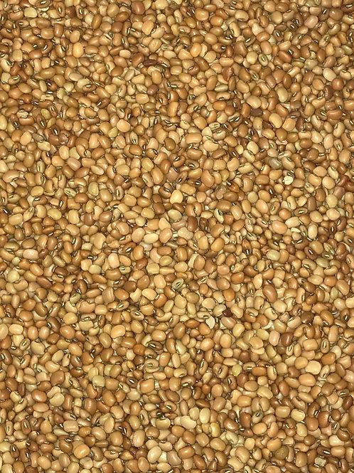 Iron Clay Cowpeas / Black-Eyed Peas