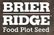 Brier Ridge 2.JPG
