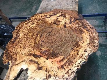 Oak Burl Coffee Table