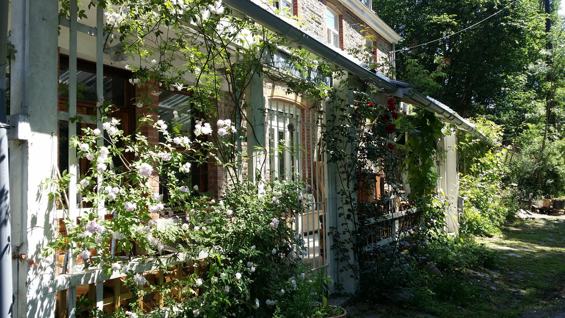 Vakantiehuis Le Reve du Sanglier