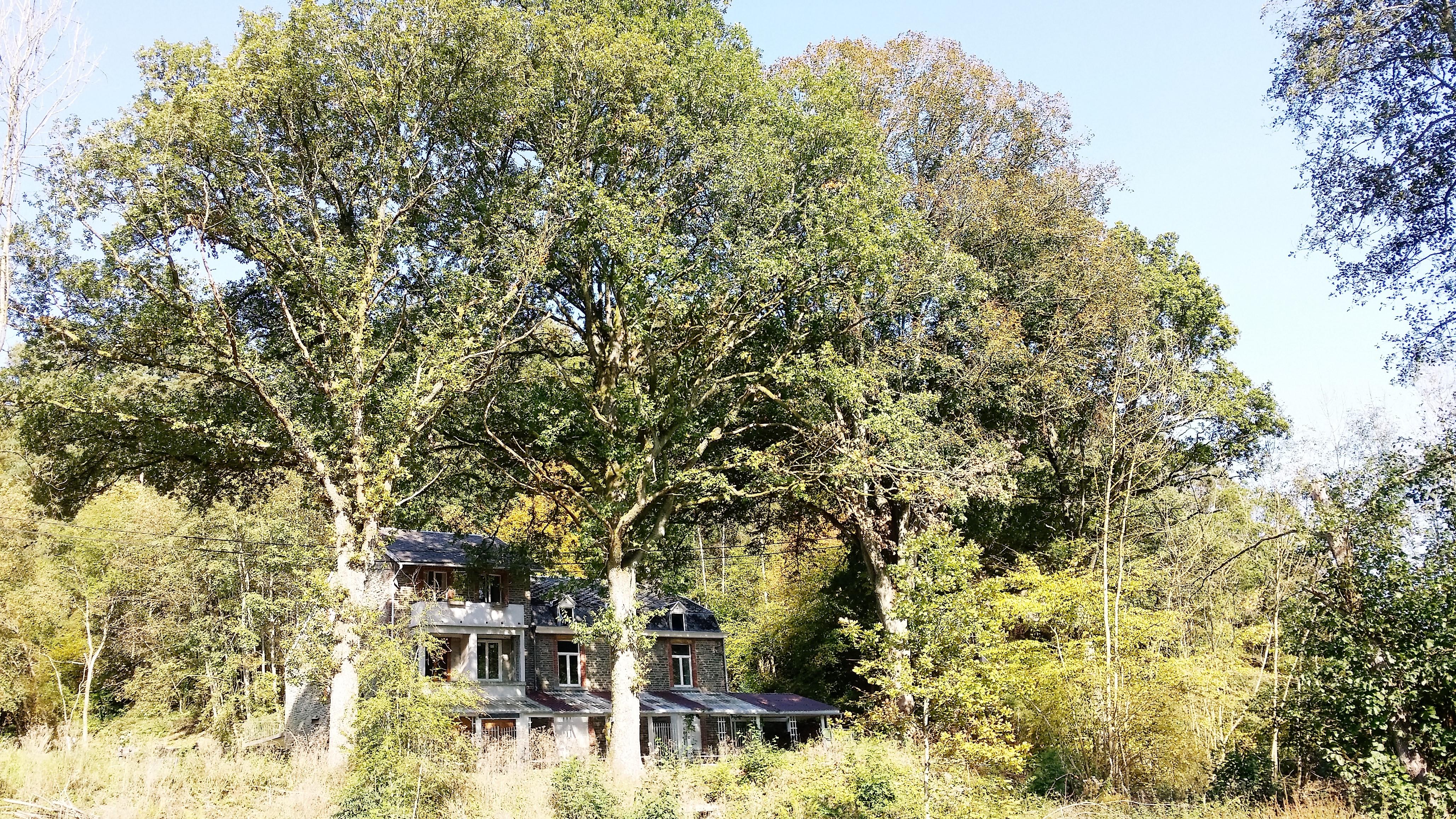 Vakantiehuis Le Reve du Sangli