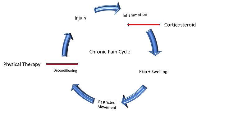 Chronic Pain Cycle.JPG