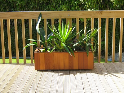 Cedar_planter_box_1