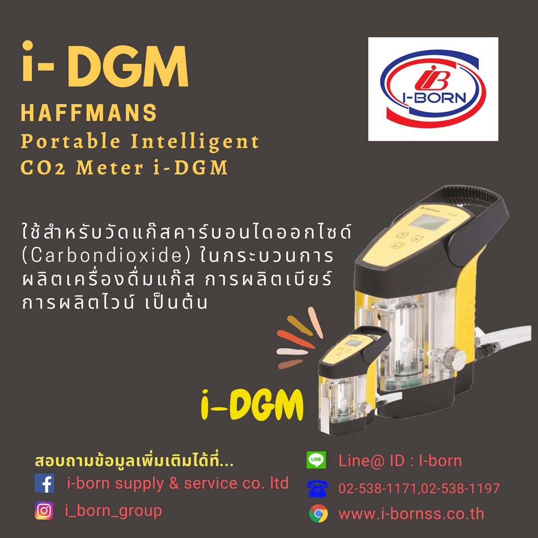 i-DGM2.png