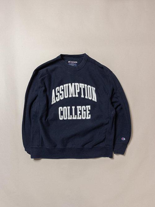 Vtg Champion Reverse Weave Sweatshirt (XL)