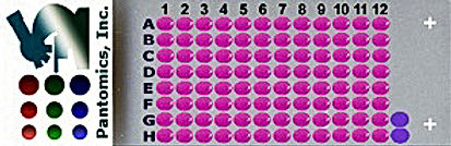 UNC241A-A02.jpg