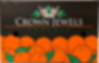 citrus packing.png