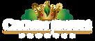 logo-2 white.png