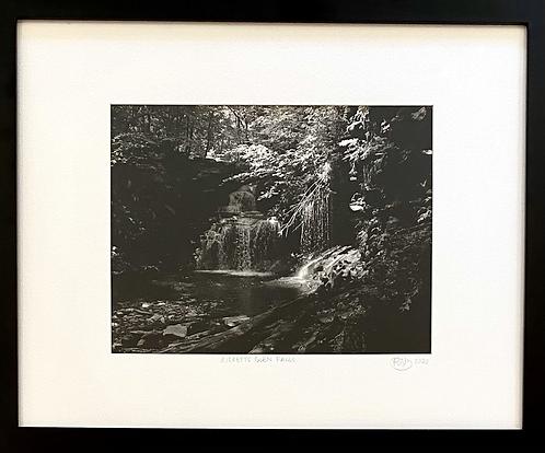Ricketts Glen Waterfall