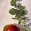 Thumbnail: Apple and Honeysuckle Vine