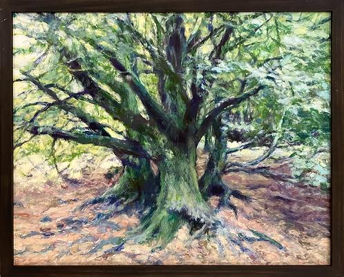 Leprechaun Tree