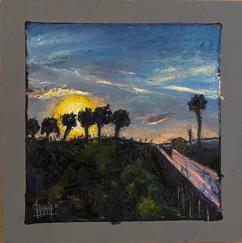 Payne's Prairie Boardwalk - Sunset