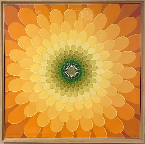 Zinnia- shades of orange