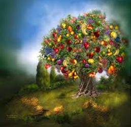 A bountiful abundant life