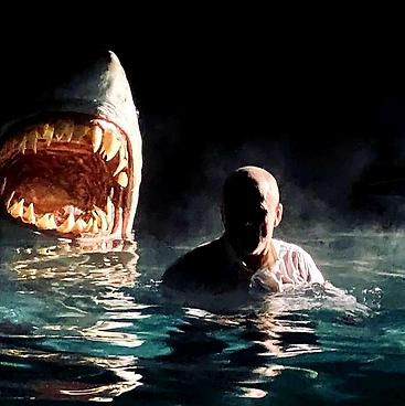 Shark 1.png