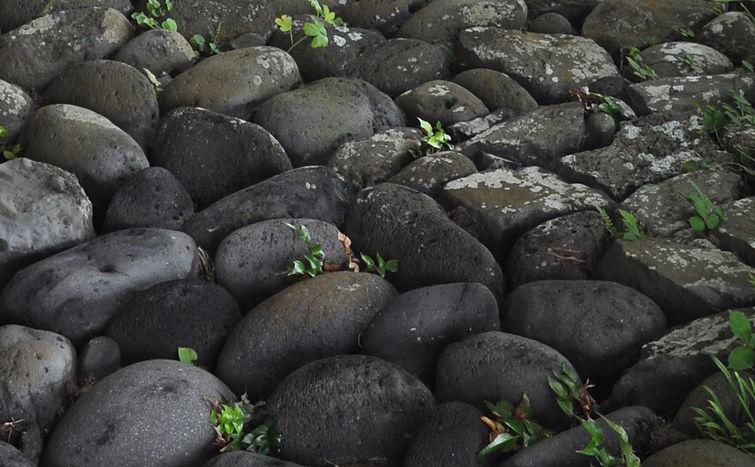 石垣の石.jpg