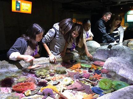 02.08.19_6th_gr_Aquarium_Pacific.jpg