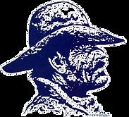 thumbnail_Outlaw head logo_edited.png