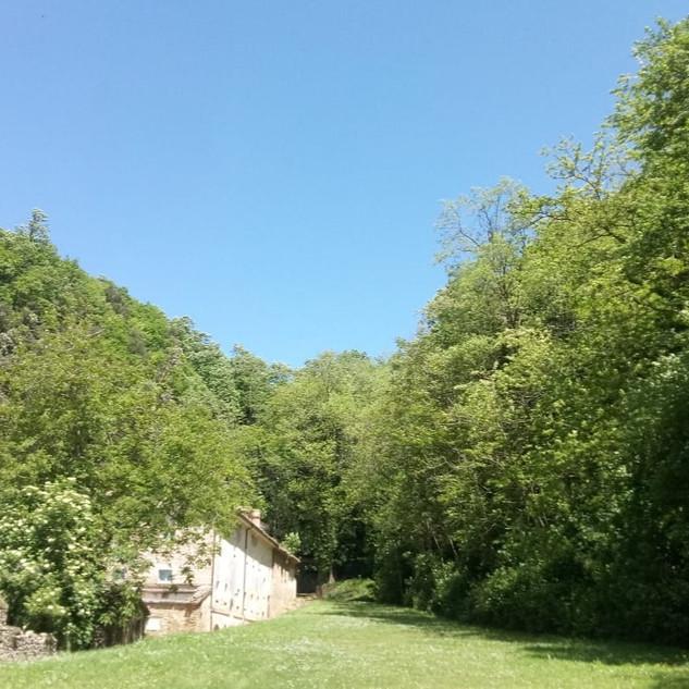 Eremo dei Frati Bianchi sovrastato da un aggruppamento di lecci (Quercus ilex) sulla falesia di arenaria e bosco di caducifoglie sul versante opposto.