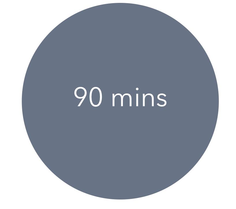 90-min Zoom Lesson