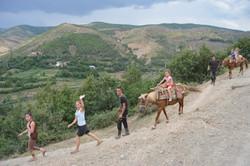 Albánie, 2016