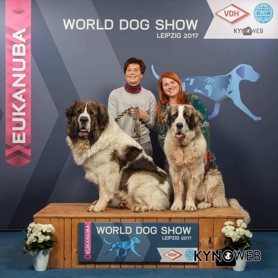 FREE_PICTURE_924_WORLD_DOG-SHOW_Kynoweb_