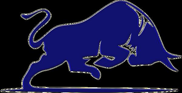 blue-bull-logo_edited.png