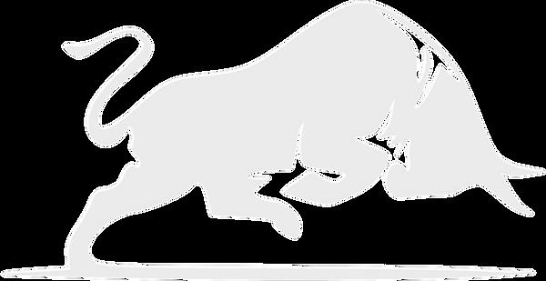 blue-bull-logo_edited_edited_edited.png