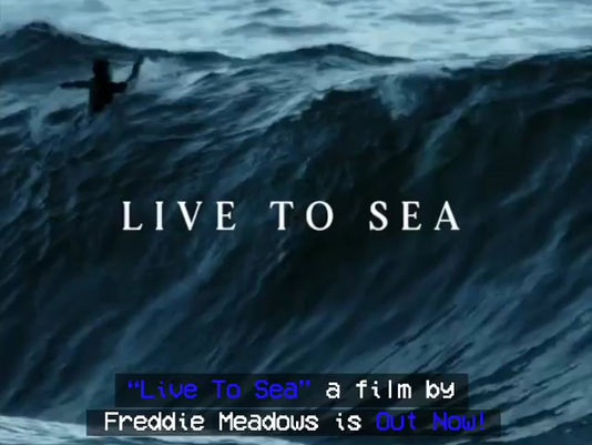 LIVE TO SEA The Movie is Out Now!