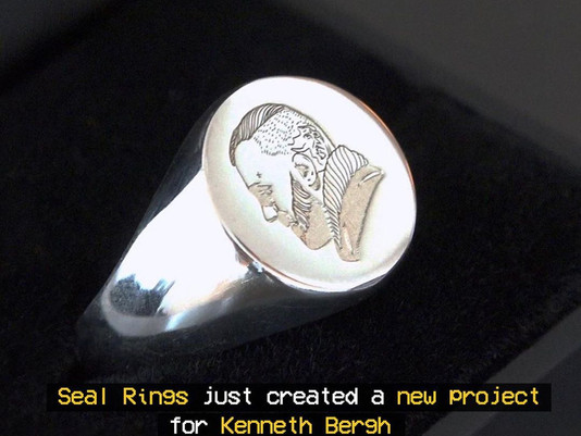 "VIRTUE Members ""SEAL Rings"" have just created a new project for Kenneth Bergh!"