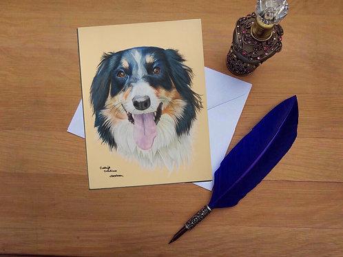 Shammy the Border Collie greetings card.