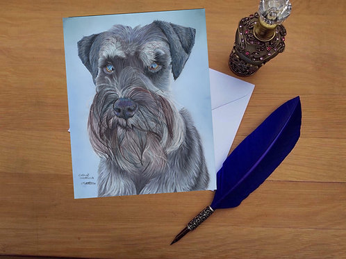 Obi the Schnauzer greetings card
