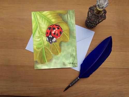 Ladybird greetings card.