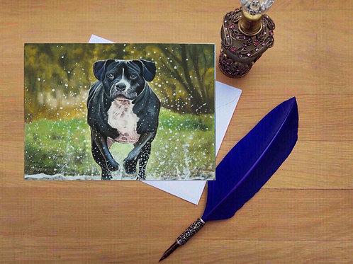 Duke the dog greetings card