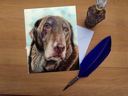 Chocolate Labrador greetings card