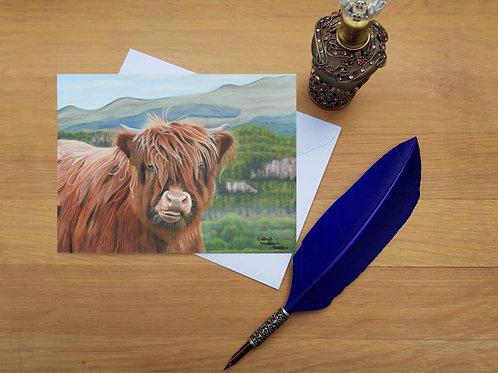 Highland Cow calf greetings card
