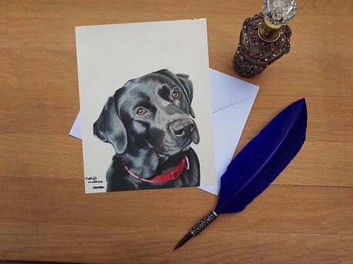 Indi the Black Labrador greetings card.